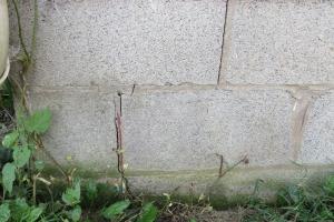 foundation damage - Herr & Co,